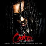 Lil Wayne   -   The Carter Collection (2010) [192k